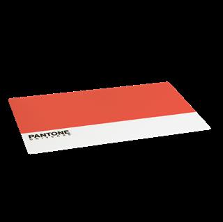Imagen de Individual Pantone Naranja