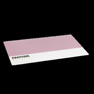 Imagen de Individual Pantone Rosa